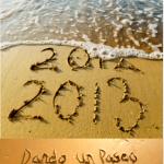 Propósitos para 2013…